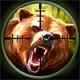 bear-hunter 0