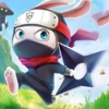 ninja-rabbit