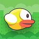 Squary-Bird